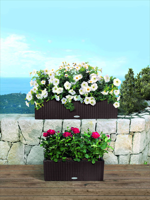 Lechuza Plant Containers