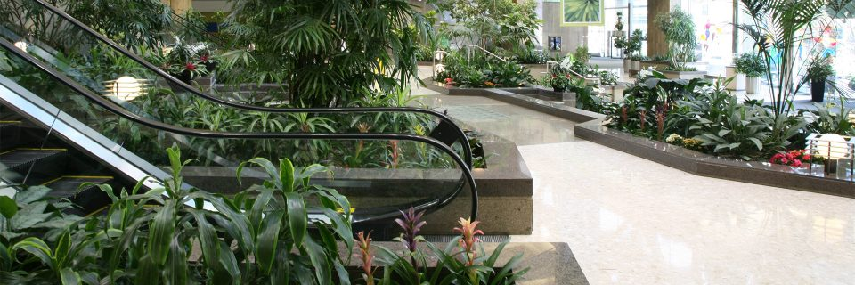 Count On Our 100% Guarantee Maintenance Program